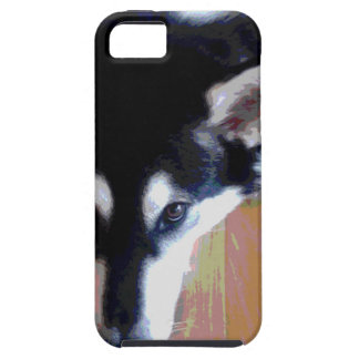 Cute Alaskan Malamute Face iPhone 5 Cases
