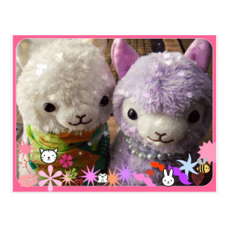 Cute Alpaca Post Card