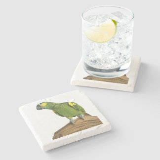 Cute Amazon Coasters Stone Beverage Coaster