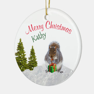 Cute Animal Ornament / Christmas Squirrel