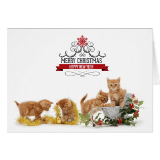 Cute animals cats Christmas card