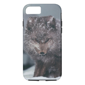 Cute Arctic Blue Phase Fox Winter Mobile Phone iPhone 7 Case