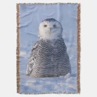 Cute Arctic Snowy Owl Photo Designed Woven Throw Blanket