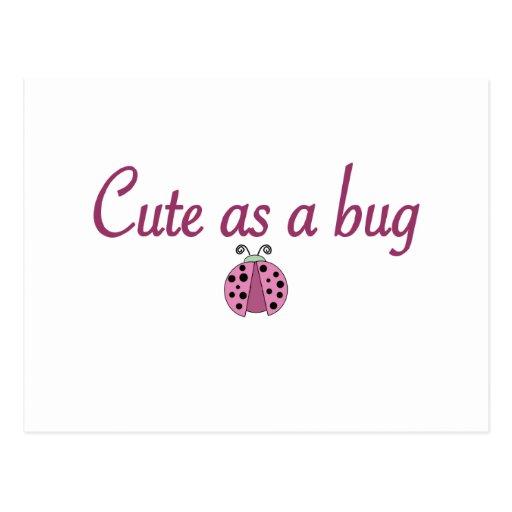 Cute as a bug 2 postcard