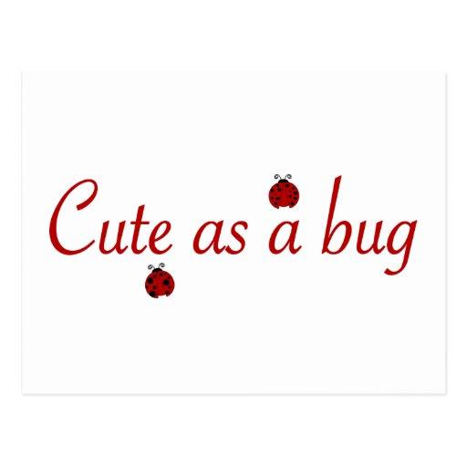 Cute as a bug postcards