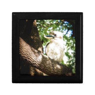 Cute Australia Kookaburra Gift Box