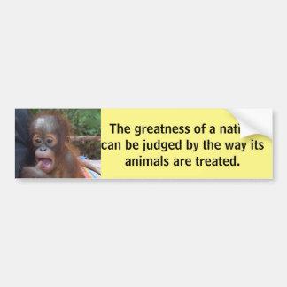 Cute Baby Animals Bumper Sticker