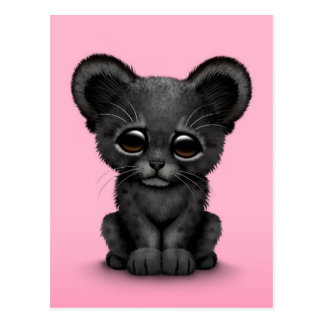 Cute Baby Black Panther Cub on Pink Postcard
