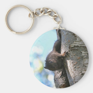 Cute Baby Black Squirrel Key Ring