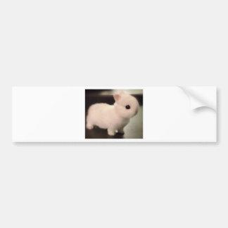 Cute baby bunny bumper stickers