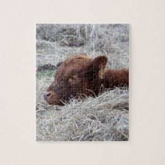 Cute Baby Calf, Farmyard Animal Cow Puzzle