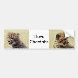 Cute baby Cheetah Cub Bumper Sticker