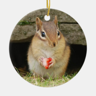 Cute Baby Chipmunk with Strawberry Ceramic Ornament