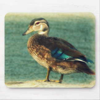 Cute Baby Duck Mouse Pad