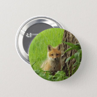 Cute baby fox in springtime photograph 6 cm round badge