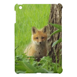 Cute baby fox in springtime photograph cover for the iPad mini