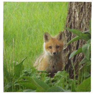 Cute baby fox in springtime photograph napkin