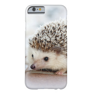 Cute Baby Hedgehog Animal Barely There iPhone 6 Case