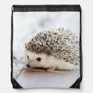 Cute Baby Hedgehog Drawstring Bag