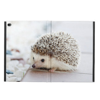 Cute Baby Hedgehog Powis iPad Air 2 Case