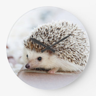 Cute baby hedgehog wall clock