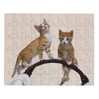 Cute Baby Kitten Funny Play Gym Photo Cat Lover .. Jigsaw Puzzle