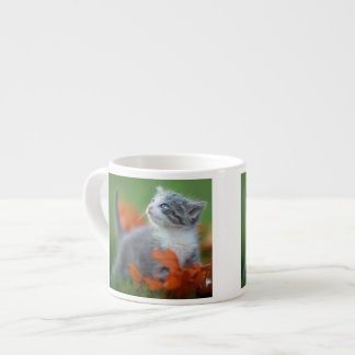 Cute Baby Kittens Playing Outdoors in the Grass Espresso Mug