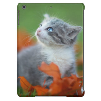 Cute Baby Kittens Playing Outdoors in the Grass iPad Air Case