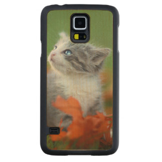 Cute Baby Kittens Playing Outdoors in the Grass Maple Galaxy S5 Case