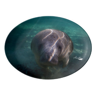 Cute baby manatee porcelain coupe platter