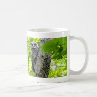 Cute Baby Owl Coffee Mug
