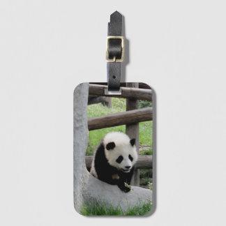 Cute Baby Panda Luggage Tag