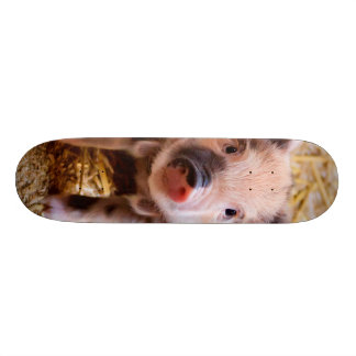 Cute Baby Piglet Farm Animals Babies Skate Deck