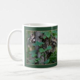 Cute Baby Raccoons /Border Coffee Mug