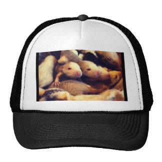 Cute baby rat photo design cap