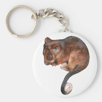 Cute Baby Ringtail Possum Basic Round Button Key Ring