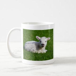 Cute baby sheep lying in grass coffee mug