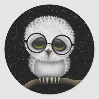Cute Baby Snowy Owl Wearing Glasses with Stars Classic Round Sticker