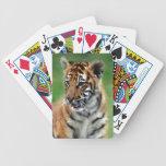 Cute baby Tiger cub Card Deck