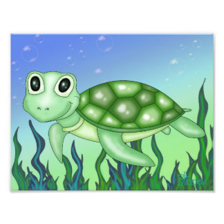 Cute Baby Turtle Photographic Print