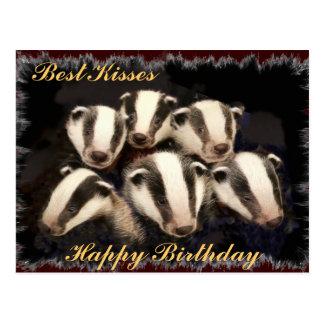 Cute Badger Cubs Postcard