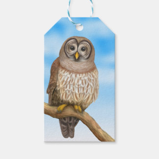 Cute Barred Owl Gift Tags