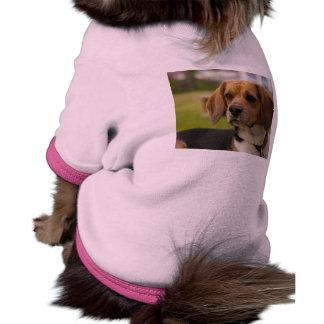 Cute Beagle Puppy Dog Dog Clothes