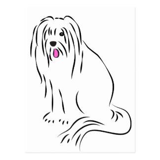 Cute Bearded Collie Shaggy Dog Postcard
