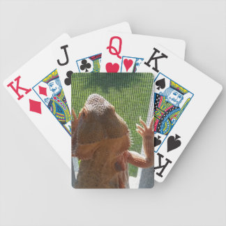Cute Bearded Dragon Photo Print Design Bicycle Playing Cards