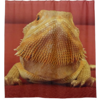 Cute Bearded Dragon Picture Red Shower Curtain