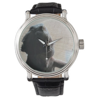 Cute Beardie Picture Black Leather Wrist Watch