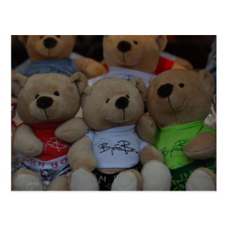 Cute Bears Postcard