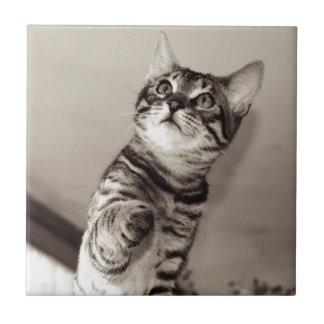 Cute Bengal Kitten Ceramic Tile