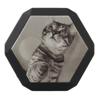 Cute Bengal Kitten Photo Black Bluetooth Speaker